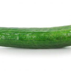 concombre long bio