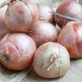 Oignon Rosé type Roscoff